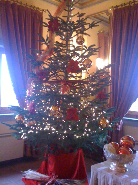 Il nostro Albero di Natale per voi! / Christmas tree for our guests!